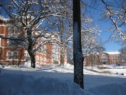 UMB campus