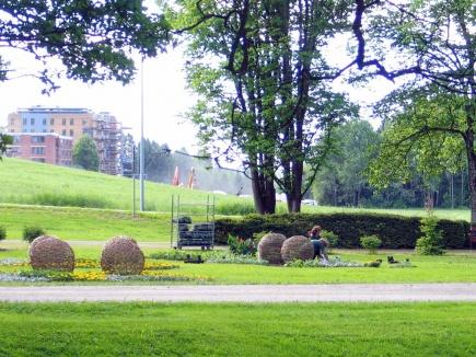 Planting av sommerblomster i viftebed 10. juni 2013 Bak ivirge gartnere og sommervikarer, jobbes det med etablering av nye studentboliger