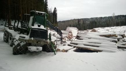 Det er tatt ut mer skog for  gjre plass til fang- og sedimenteringsdammen.