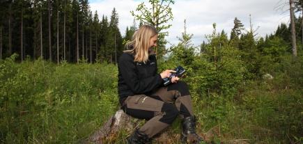 Anne Guri Klvstad , Mjsen Skog benytter iPad med ALLMA for  planlegge tiltak i ungskogen.