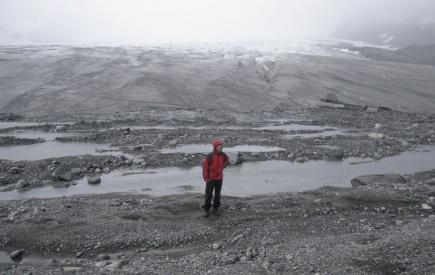 Vegetasjonsls pionermark, men med smdyr! Bildet er fra 2010, og er tatt fra en morene som ble dannet i 2005. Bare i 2010 trakk breen seg tilbake 34 meter (bak personen).