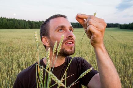 Simen Rd Sandve er en av flere forskere som har kartlagt hvetens DNA. Det kan bety bedre og mer robuste sorter i fremtiden.