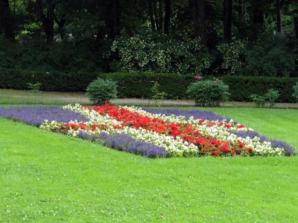 Sommerbeplantning UMB-parken 2009 - Island