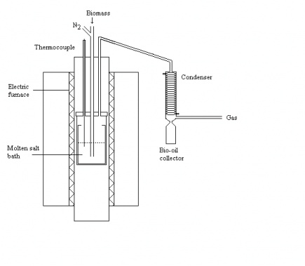 schematic view of a moltensalt reactor