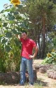 Pavlos