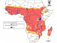 Distribution of malaria in sub-Saharan Africa