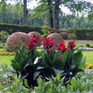 Sommerbeplantning 10.06.13 - viftebed
