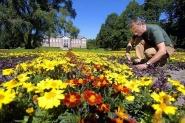 Hovedverneombud Pl Sebergsen  -( og parkansatt) planter sommerblomster