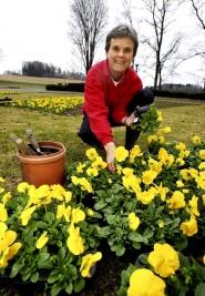 Planting en tidlig vrdag