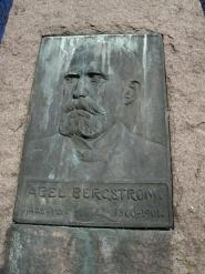 A. Bergstrm