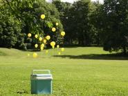 Fast og flyktig kunst i UMB-parken. 19.06.09