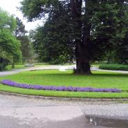 Tunet sommeren 2011